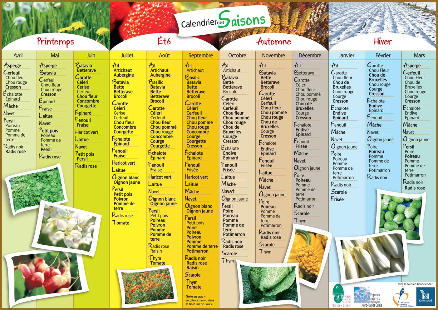 Calendrier des semis jardins familiaux de chantilly for Calendrier plantation jardin